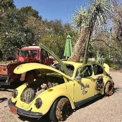 Tucson Botanical Gardens - Matt Adamson and Linda Kissam on Big Blend Radio