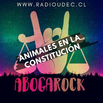 36T2 - Animales en la constitución