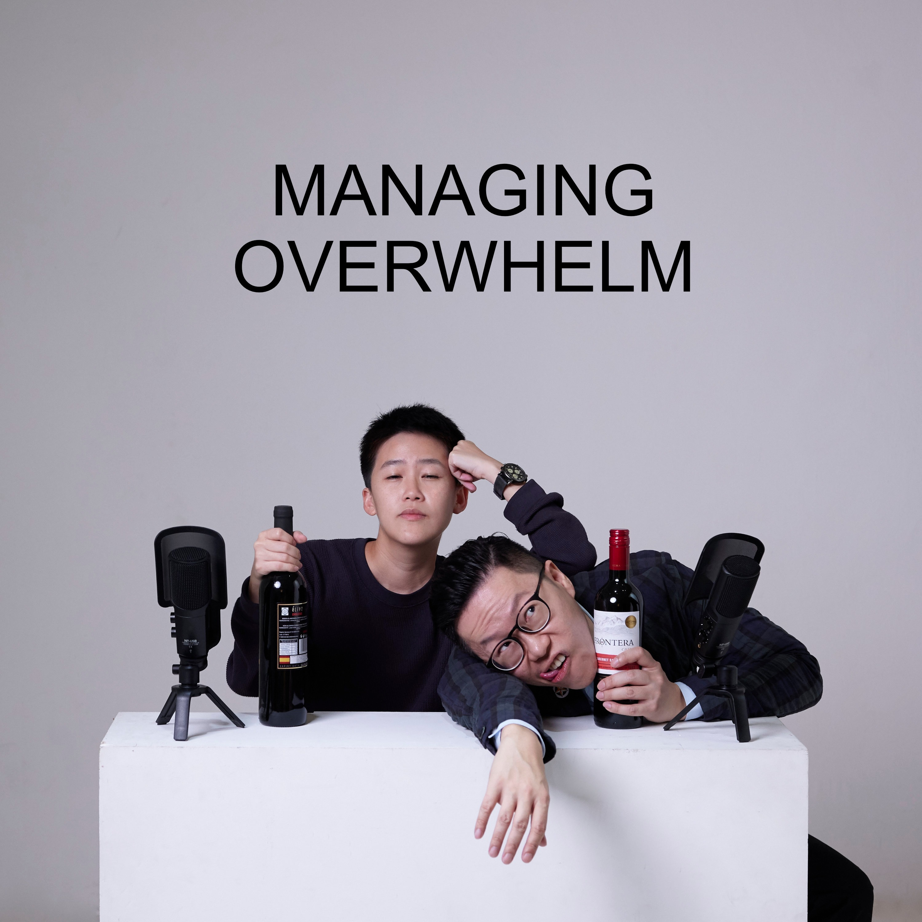 Ep #23 - Managing Overwhelm