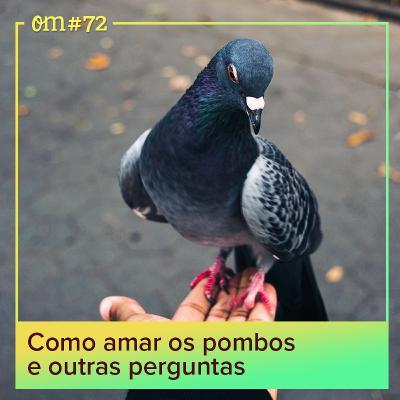 #72 - Como amar os pombos e outras perguntas