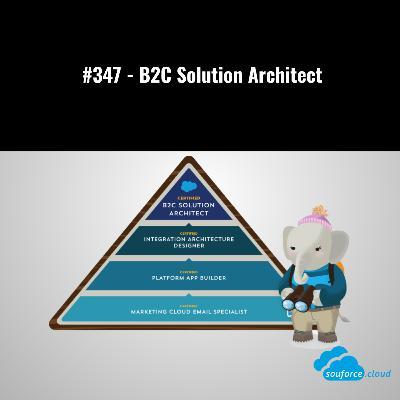 #347 - B2C Solution Architect