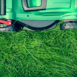 Frustrated Mortgage Banker-Philosopher Quits Job, Starts Lawn Care Business, and Sells It for 30-Month Salary