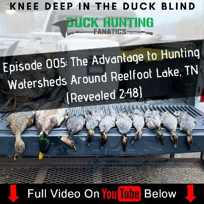 A Guide's #1 Tip For The Weekend Warrior Duck Hunter + Reelfoot Lake Migration Report