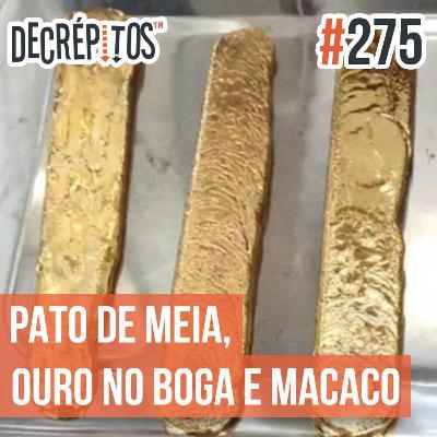 Decrépitos 275 - VACILO NEWS: Pato de meia, Ouro no boga e Rinha de macacos