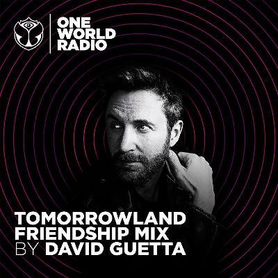 Tomorrowland Friendship Mix - David Guetta