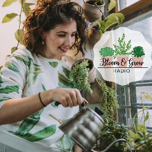 """How Plants Communicate Through VOCs and the """"Wood Wide Web"""" with Dr Elle Barnes from NYBG"""