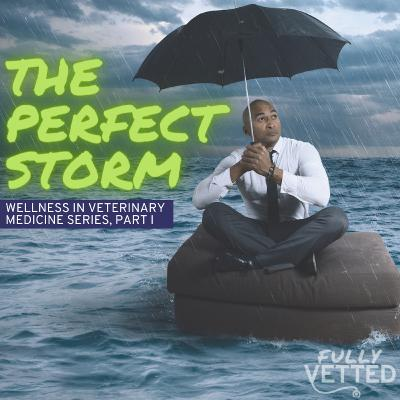 28. Wellness in the Veterinary Profession: The Perfect Storm?
