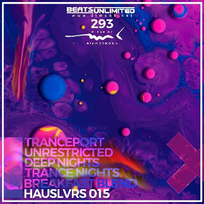 293 Hauslvrs Volume Fifteen
