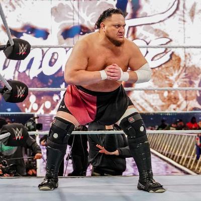 Wrestling Geeks Alliance - Samoa Go? (WWE Cut Day)