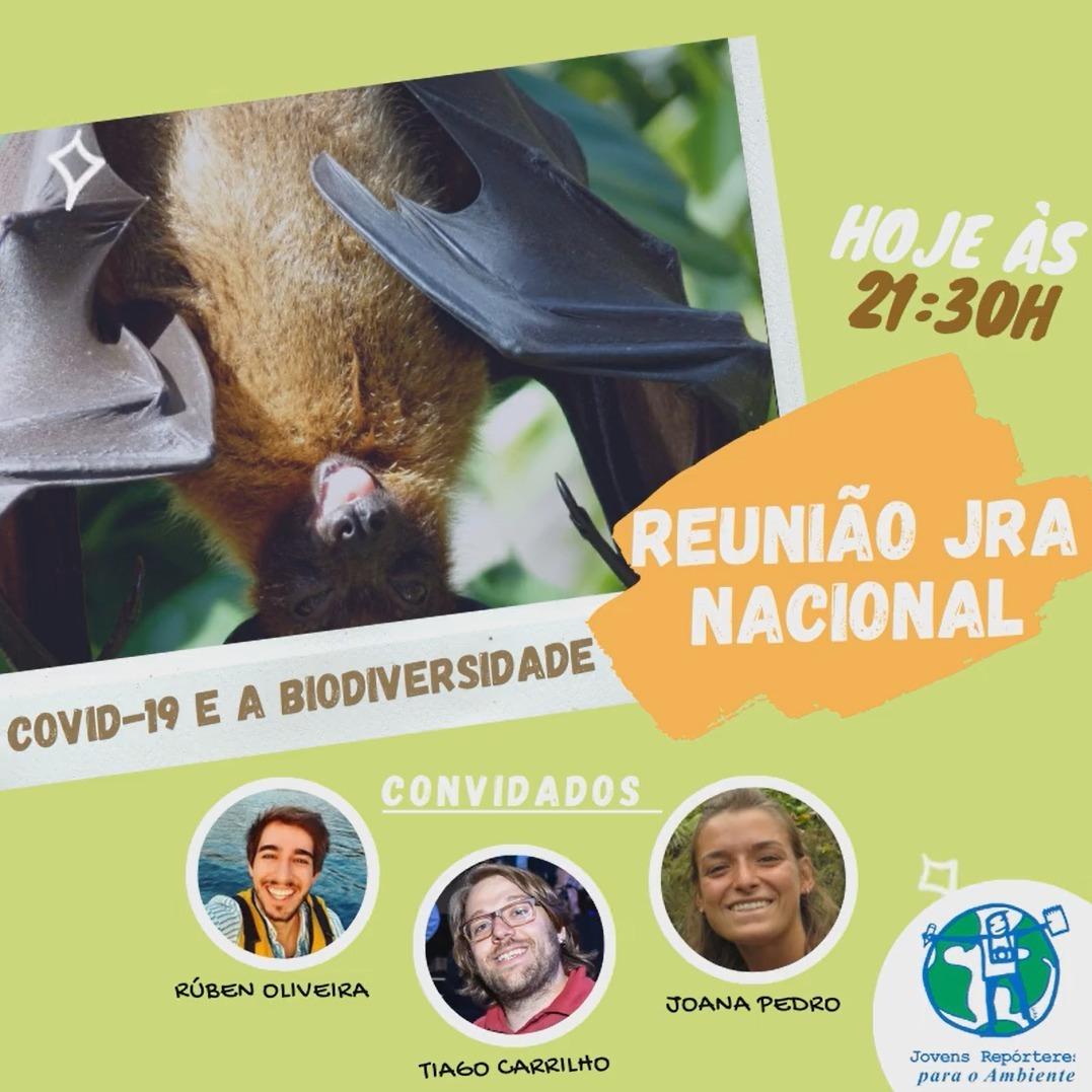 COVID-19 e a Biodiversidade// Não culpem os Morcegos