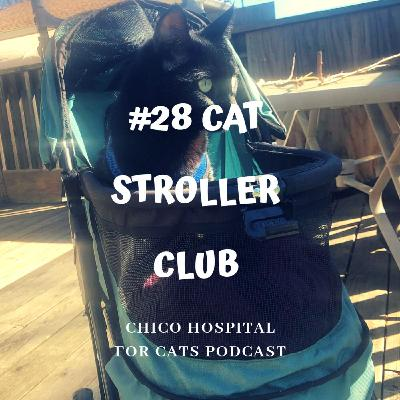 #28 Cat Stroller Club