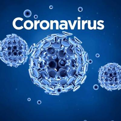 #290: The Coronavirus with Eddie Bravo and Dr. Shiva Ayyadurai
