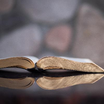 Whole Life Whole Bible - Healing