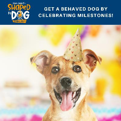 Get a Behaved Dog by Celebrating Milestones!
