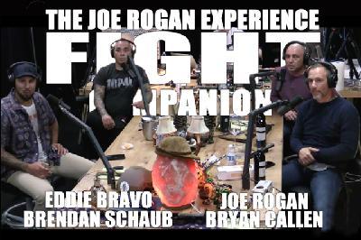 Fight Companion - May 16, 2020