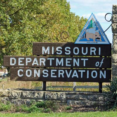 Aaron Hildreth - Missouri Department of Conservation Biologist discusses the MO Deer Herd and Season Expectations