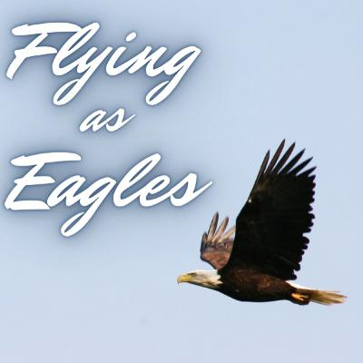 Flying as Eagles