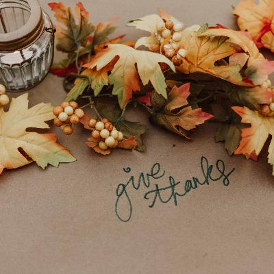 456 - Thanksgiving: what are you grateful for?
