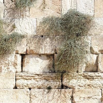 Episode 10: 1 Nephi 1:67-1574 RAV, 3:9-5:9 OPV