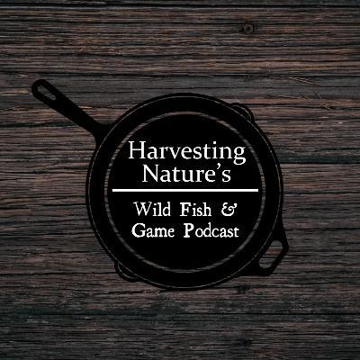 Episode 3: Everglades Deer, Panthers, Pythons, Iguana Tacos and Swamp Buggies