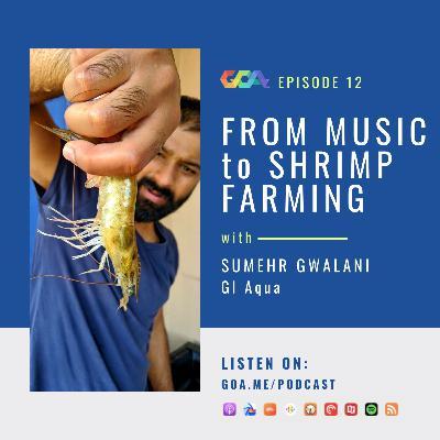 From music to freshwater shrimp farming with Sumehr Gwalani of GI Aqua   Episode 12