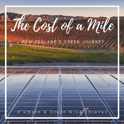 The Cost of a Mile: New Zealand's Green Journey
