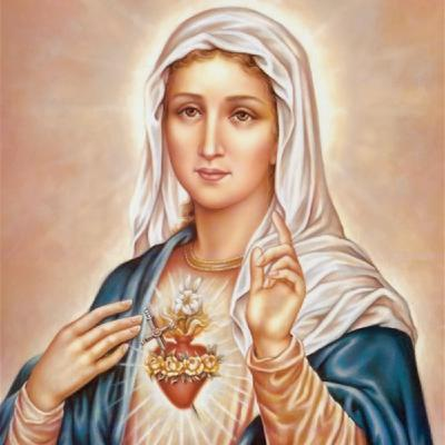 Rosary November 20