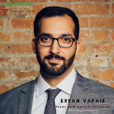 9. Entomology, PhDs, and Sci-fi Monsters w/ Erfan Vafaie