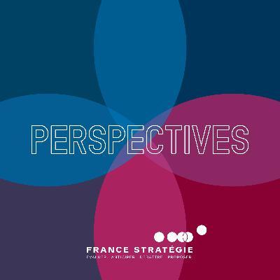 La France doit-elle promouvoir les organisations du travail apprenantes ?