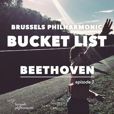 Beethoven's Vijfde: Hans van der Zanden (hoorn)