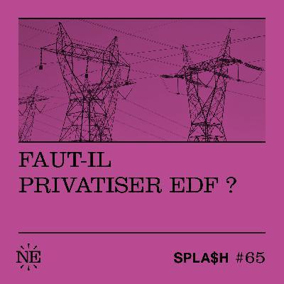 Faut-il privatiser EDF ?