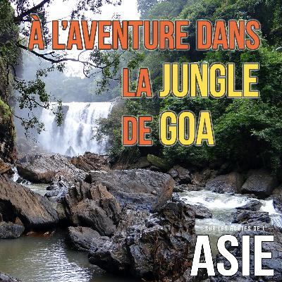 #55 – À l'aventure dans la jungle de Goa (Inde)