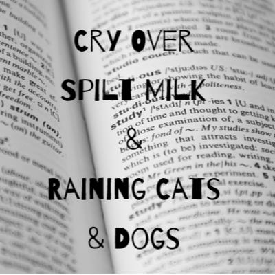 Episode 16: Cry Over Spilt Milk & Raining Cats & Dogs