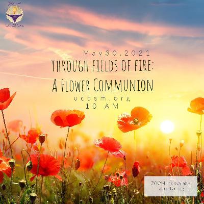 Through Fields of Fire: A Flower Communion