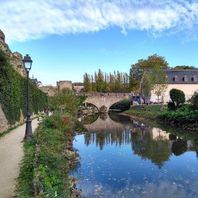 #13 - Le cadre général de la faillite en droit luxembourgeois : un premier aperçu
