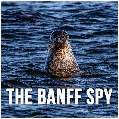 The Banff Spy Pilot Podcast (Segment 1, Segment 2 follows)