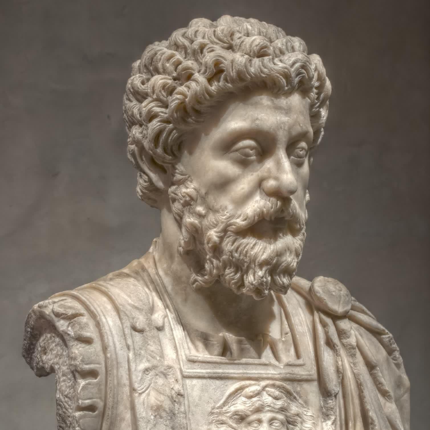Alpha Stoic
