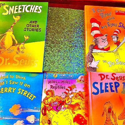 Dr. Seuss World (Parody of Too Bizarre by Skrillex, Swae Lee, & Siiickbrain)