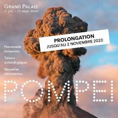 """Conférence """"Pompéi, la cité des gladiateurs"""" (15/09/2020)"""