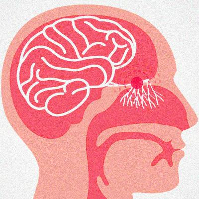 What is anosmia?