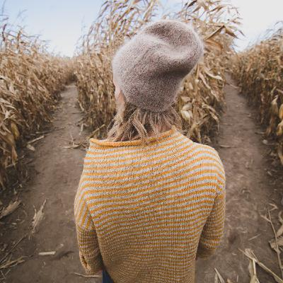Fall Study: What do I choose?
