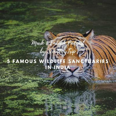 4: 5 Famous Wildlife Sanctuaries In India