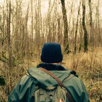 536 - Parques, o hábito de escrever e caminhar: a vida pode ser boa!