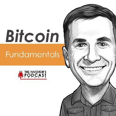 BTC048: Does the Stock to Flow Model Eventually Break w/ Plan B (Bitcoin Podcast)