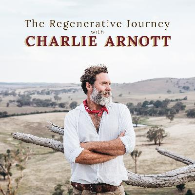 Episode 3 | Damon Gameau | Director of 2040 & all time good bloke helping to take regenerative agriculture to the masses