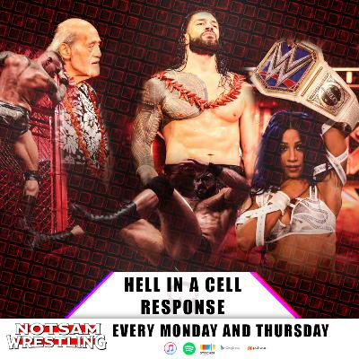 The Hell in a Cell Response - Notsam Wrestling 314