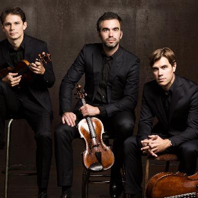 Das Modigliani Quartett spielt Joseph Haydn: Streichquartett B-Dur op. 76 Nr. 4