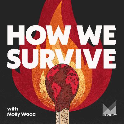 """Introducing """"How We Survive"""""""