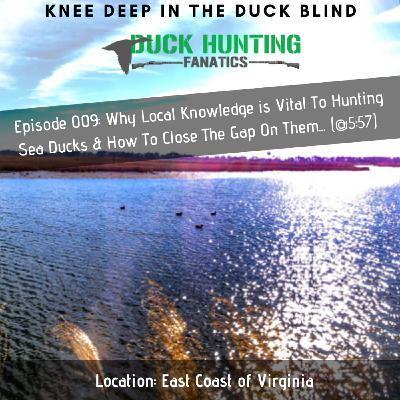 The #1 Situation When You DON'T Need a Duck Call.. + Maryland Duck Hunting Report