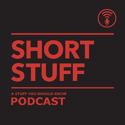 Short Stuff: The Number 23
